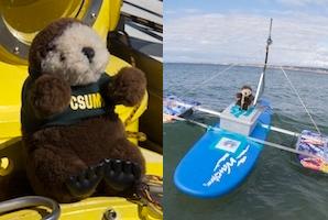 Captain Mildew plush otter