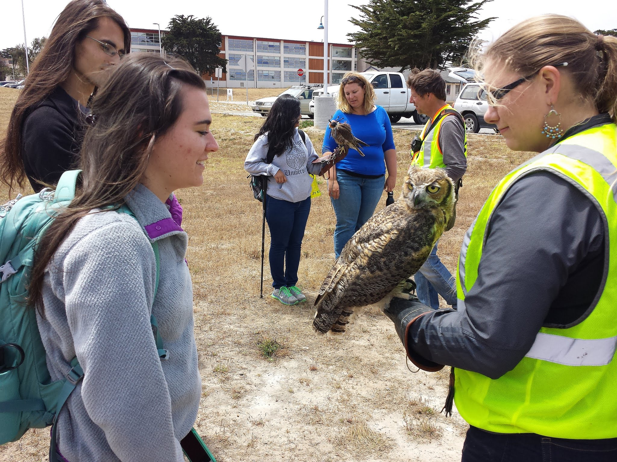 Students learn about owls