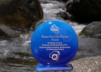 Water Award Trophy