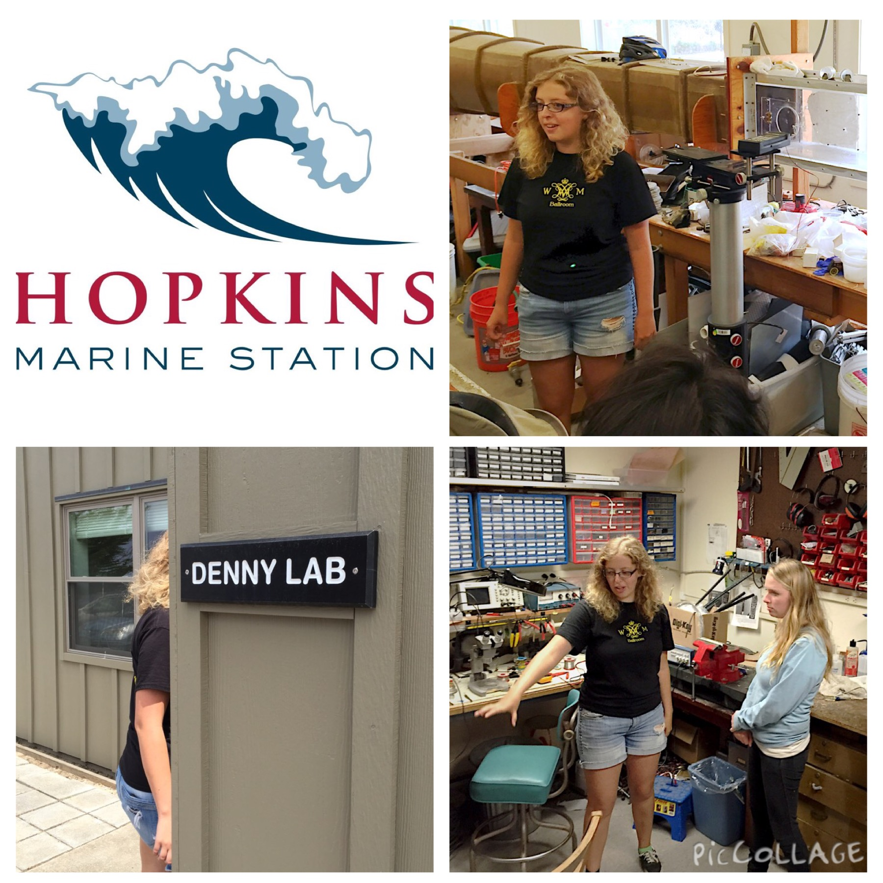 collage of reu student colleen flynn working in her lab