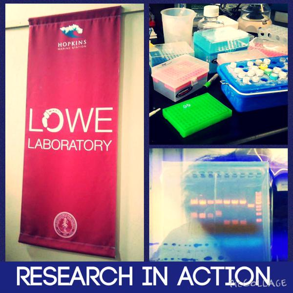Shots from student lab at Hopkins