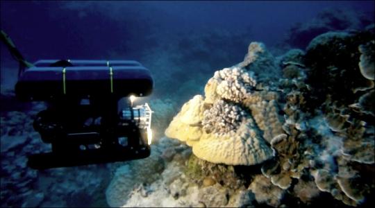 Image of Ulithi ROV