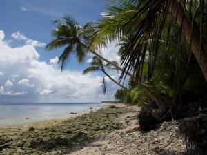 Falalop Island shoreline