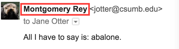 Screenshot showing a full name versus an email address.