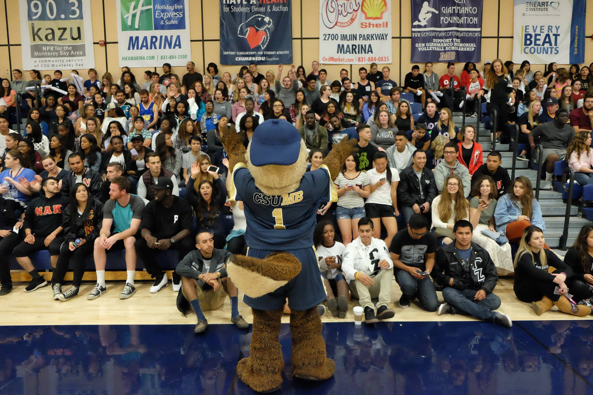 """School mascot """"Monte"""" cheering with the crowd during a basketball game"""