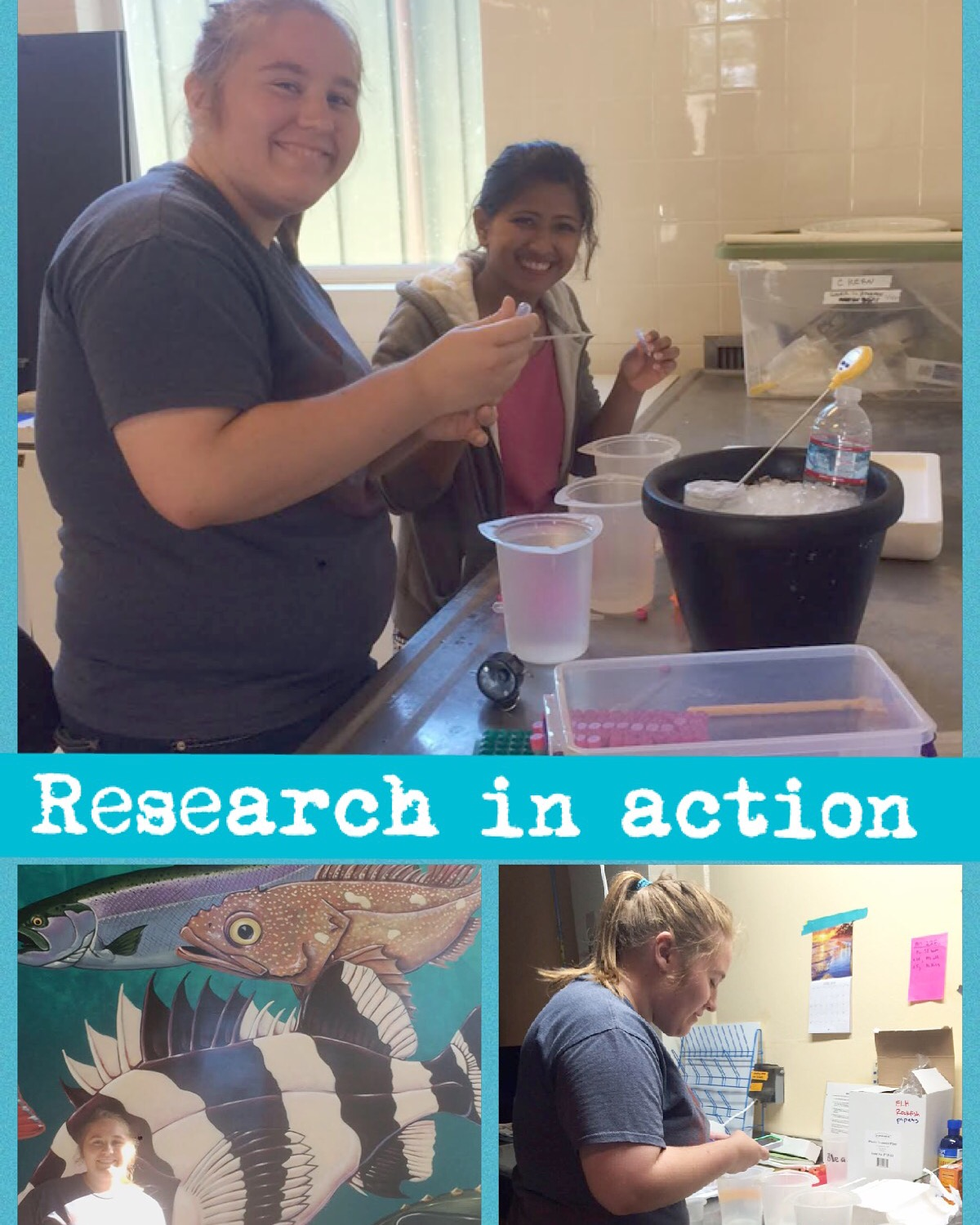 Mackenzie in three pictures performing her research on rockfish