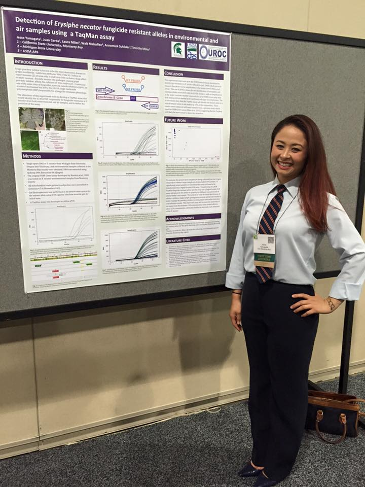 UROC Scholar Jesse Yamagata presenting her research at the SACNAS conference.